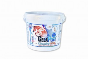 GelaPony Chondro HYAL - Orling - 1800 g