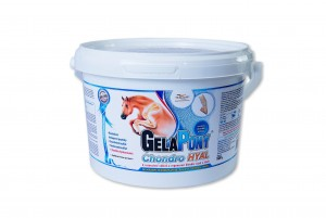 GelaPony Chondro HYAL - Orling - 900 g
